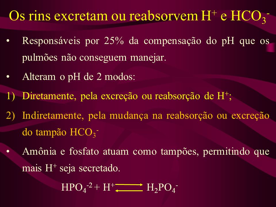 Os rins excretam ou reabsorvem H+ e HCO3-