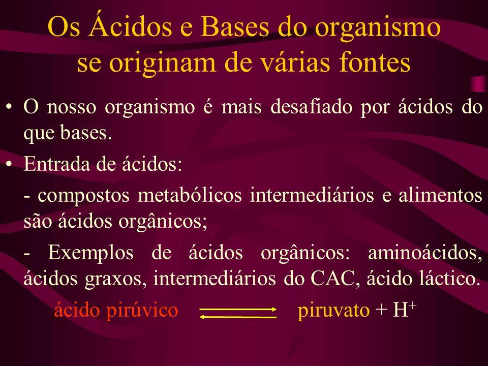 Os Ácidos e Bases do organismo se originam de várias fontes