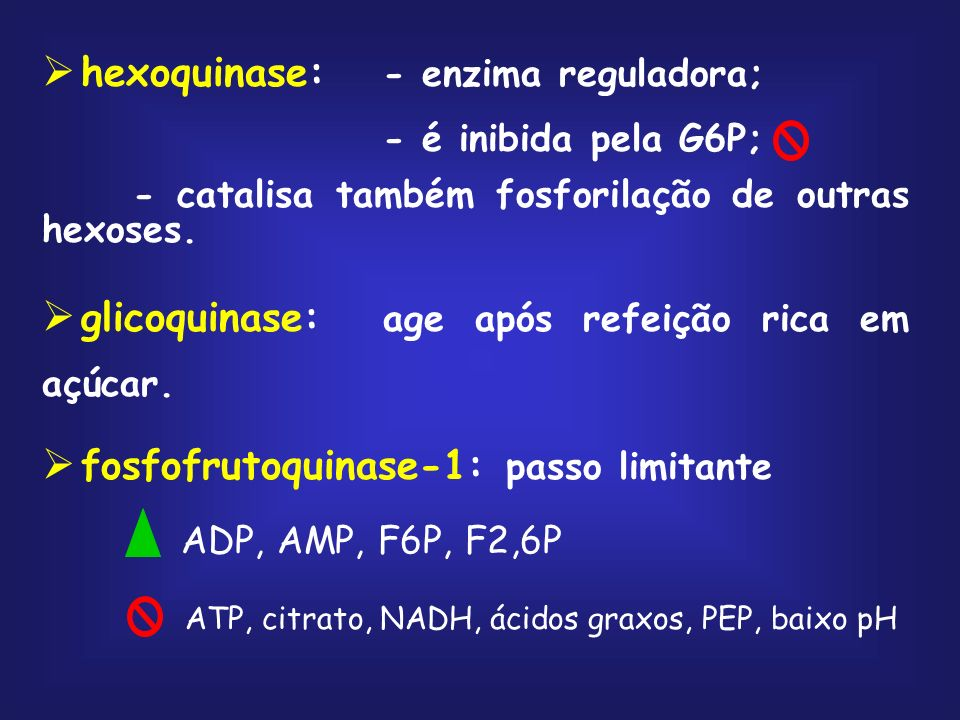 hexoquinase: - enzima reguladora;