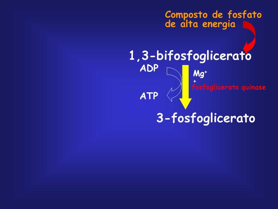 1,3-bifosfoglicerato 3-fosfoglicerato