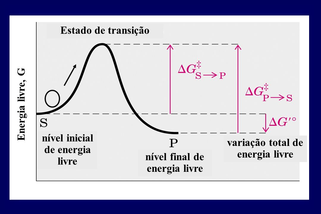 nível inicial de energia livre variação total de energia livre
