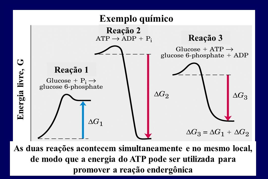 Exemplo químico Reação 2 Reação 3 Reação 1 Energia livre, G