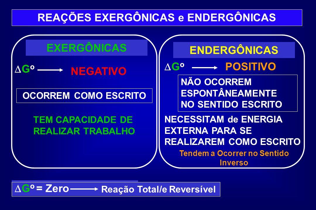 REAÇÕES EXERGÔNICAS e ENDERGÔNICAS Tendem a Ocorrer no Sentido Inverso
