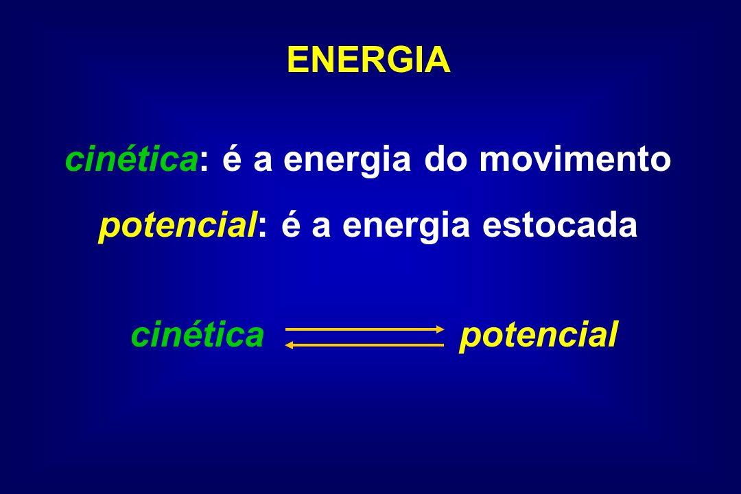 cinética: é a energia do movimento potencial: é a energia estocada