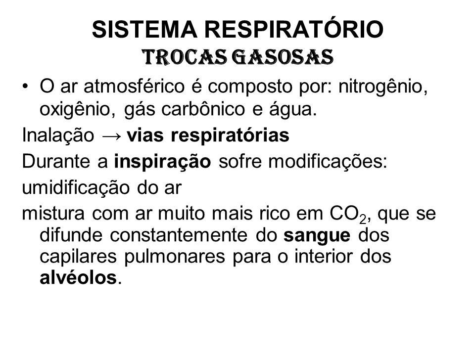 SISTEMA RESPIRATÓRIO TROCAS GASOSAS