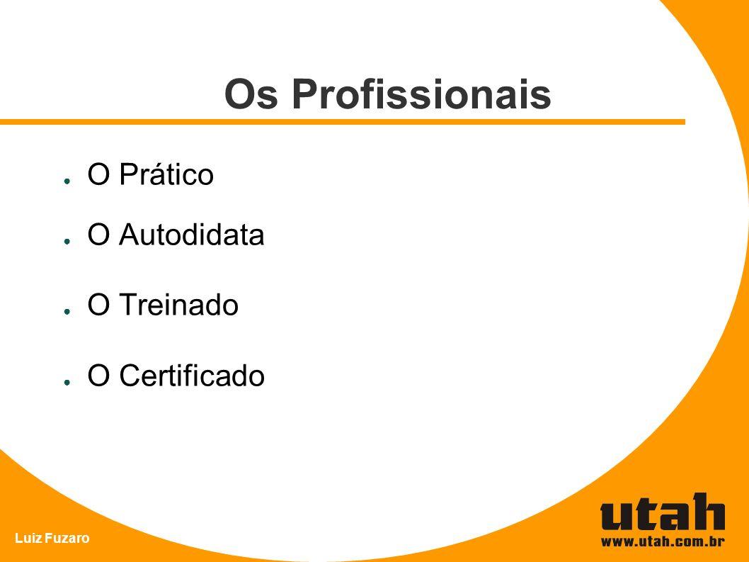 Os Profissionais O Prático O Autodidata O Treinado O Certificado