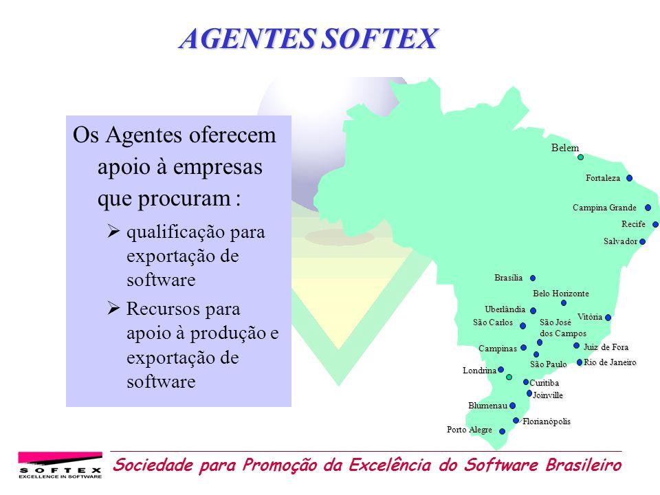 AGENTES SOFTEX Os Agentes oferecem apoio à empresas que procuram :