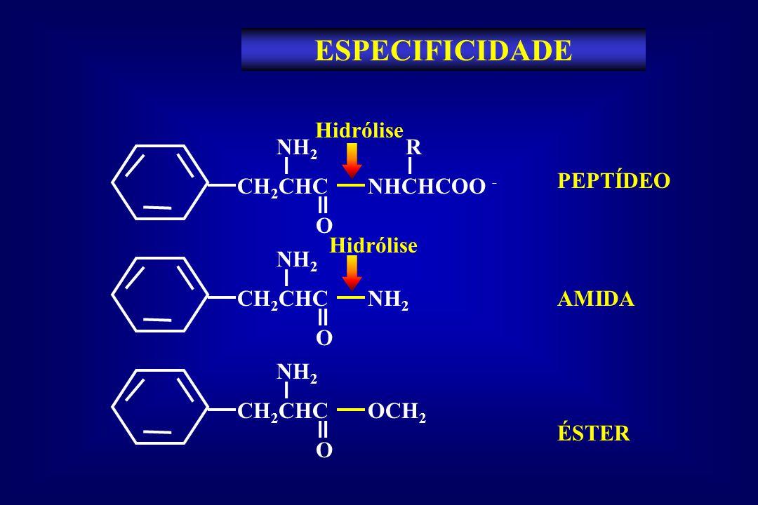 ESPECIFICIDADE Hidrólise CH2CHC NHCHCOO - NH2 O R PEPTÍDEO Hidrólise