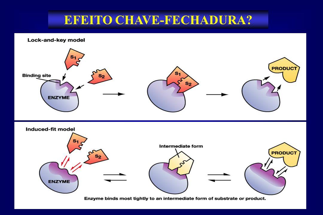 EFEITO CHAVE-FECHADURA