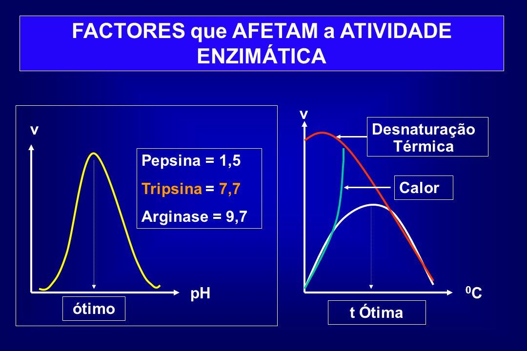 FACTORES que AFETAM a ATIVIDADE ENZIMÁTICA