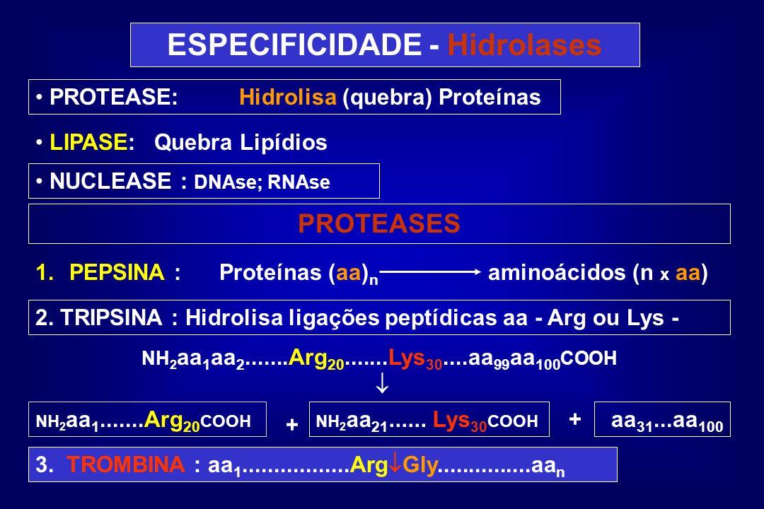 ESPECIFICIDADE - Hidrolases
