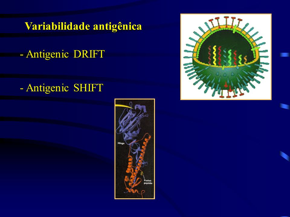 Variabilidade antigênica