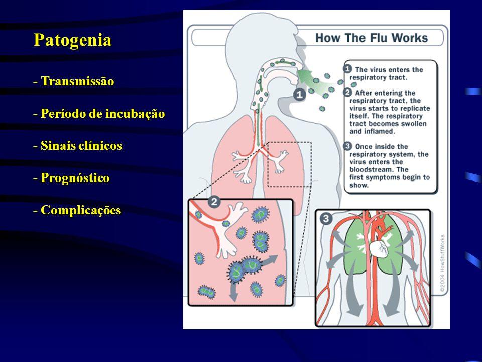 Patogenia - Transmissão - Período de incubação - Sinais clínicos