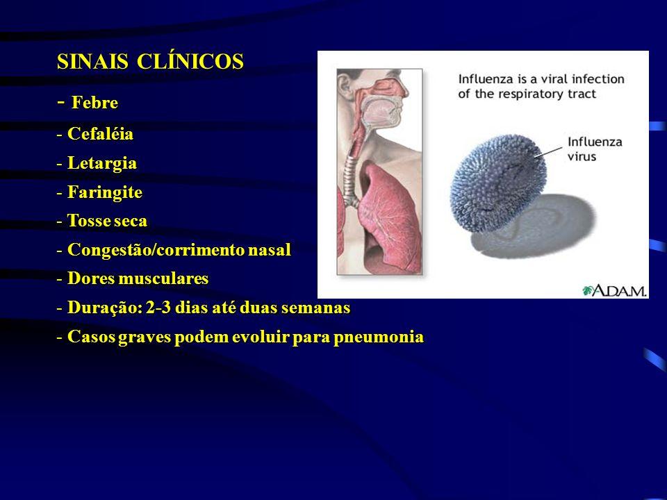 Febre SINAIS CLÍNICOS Cefaléia Letargia Faringite Tosse seca