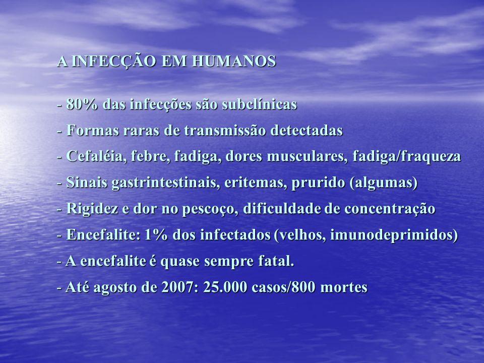 A INFECÇÃO EM HUMANOS 80% das infecções são subclínicas. Formas raras de transmissão detectadas.