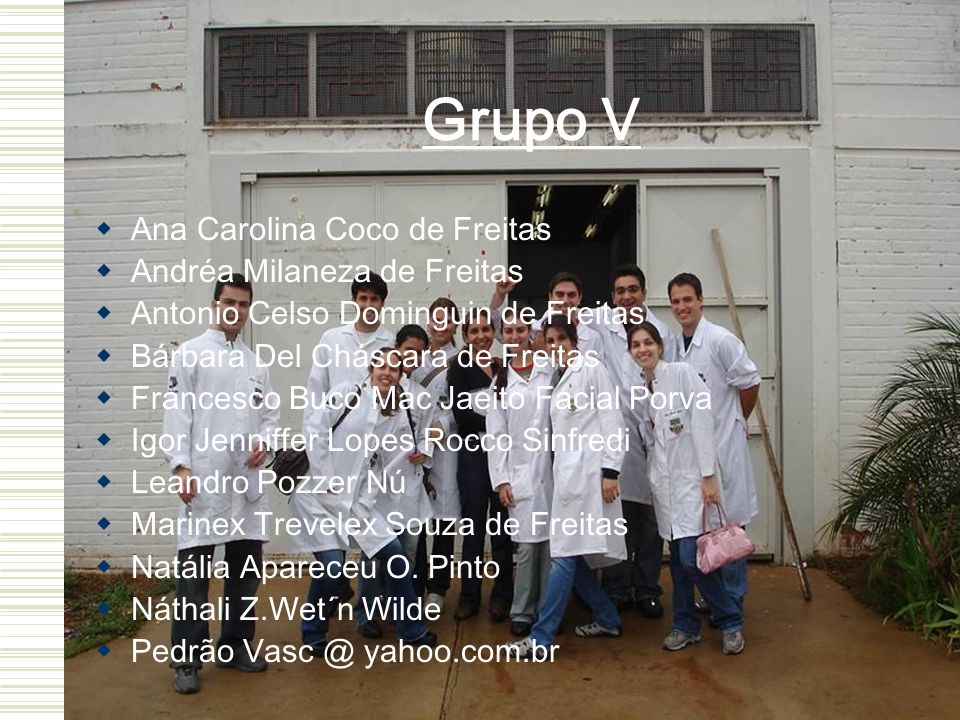 Grupo V Ana Carolina Coco de Freitas Andréa Milaneza de Freitas