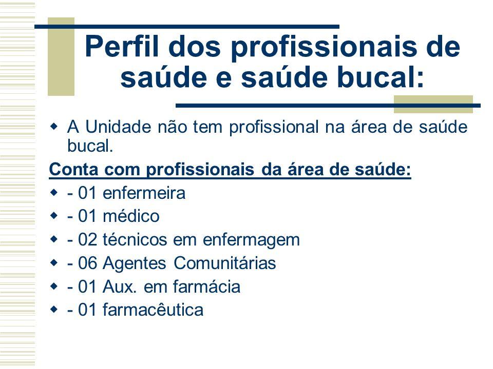 Perfil dos profissionais de saúde e saúde bucal: