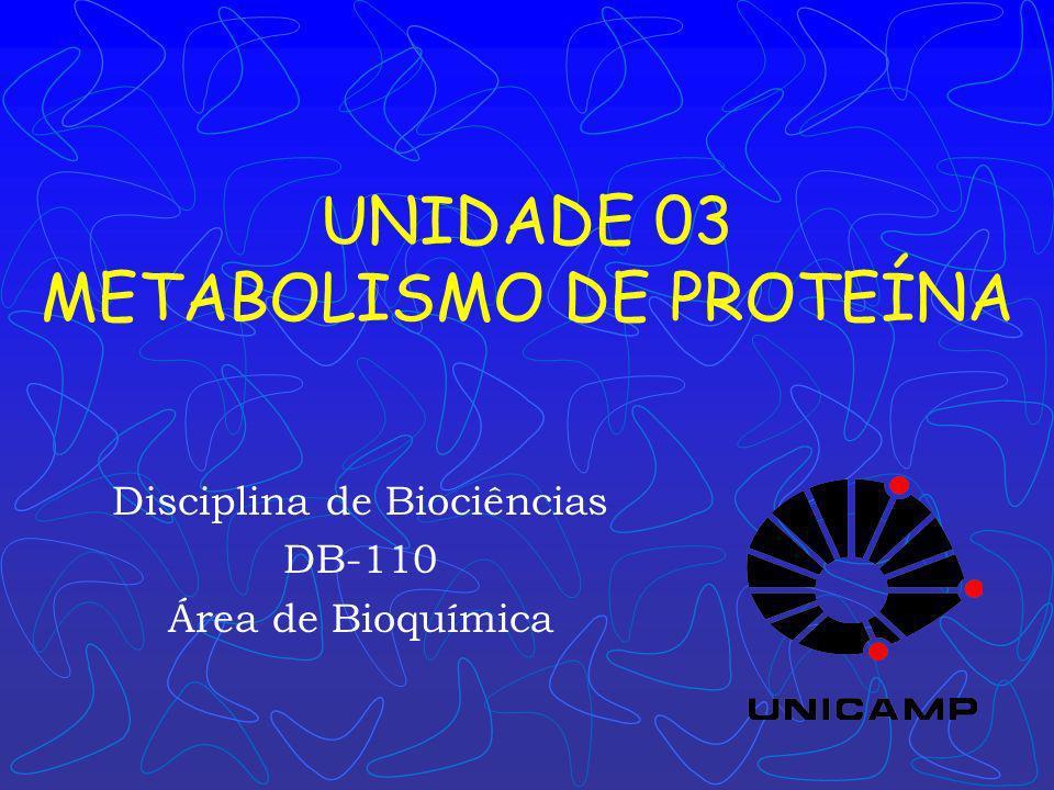 UNIDADE 03 METABOLISMO DE PROTEÍNA