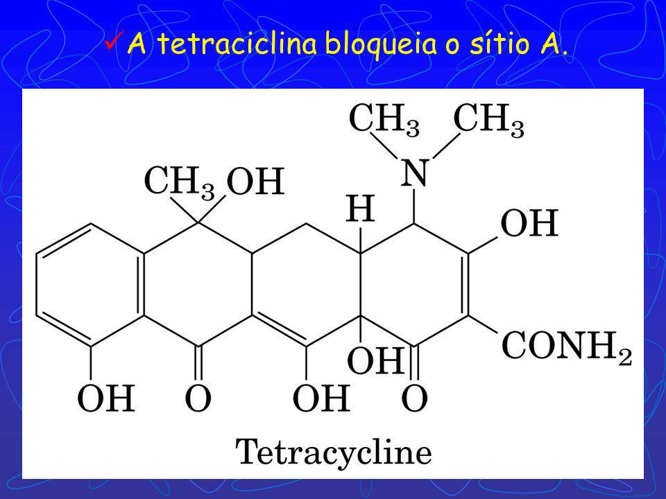A tetraciclina bloqueia o sítio A.