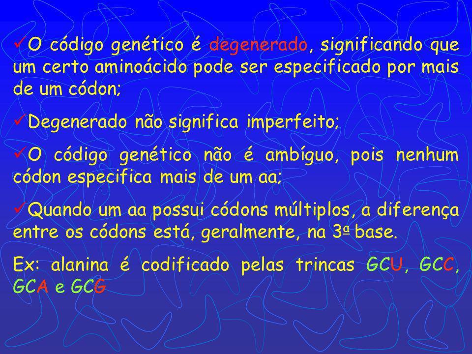 O código genético é degenerado, significando que um certo aminoácido pode ser especificado por mais de um códon;