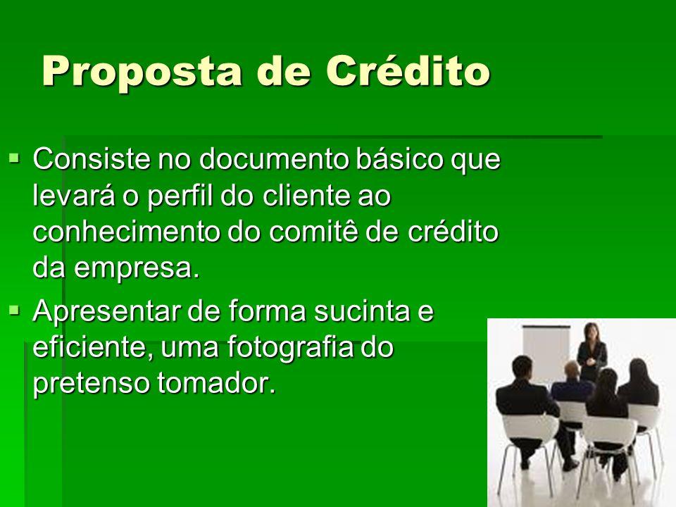 Proposta de Crédito Consiste no documento básico que levará o perfil do cliente ao conhecimento do comitê de crédito da empresa.