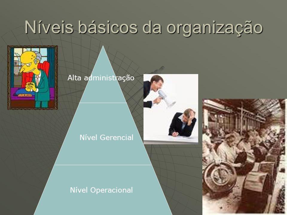 Níveis básicos da organização