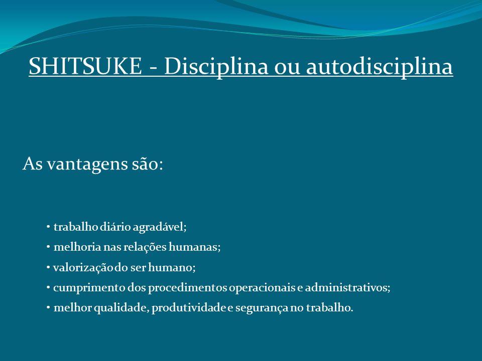 SHITSUKE ‑ Disciplina ou autodisciplina