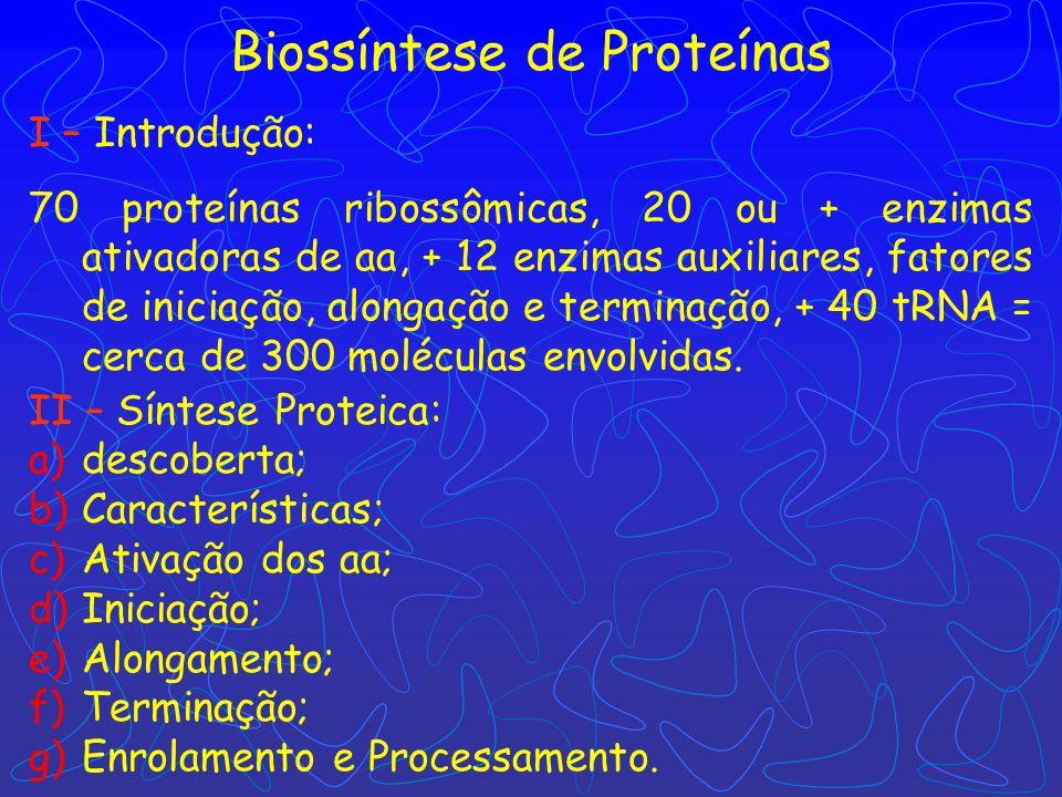 Biossíntese de Proteínas