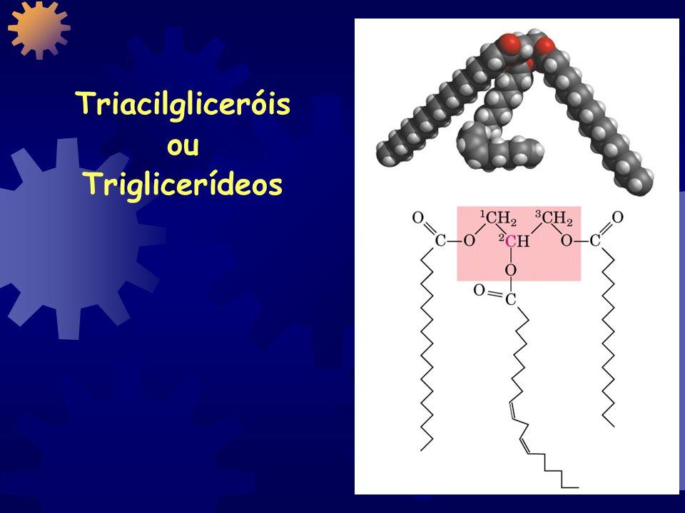 Triacilgliceróis ou Triglicerídeos