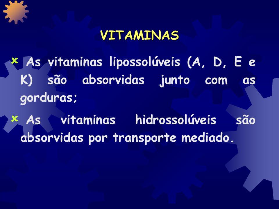 VITAMINAS As vitaminas lipossolúveis (A, D, E e K) são absorvidas junto com as gorduras;