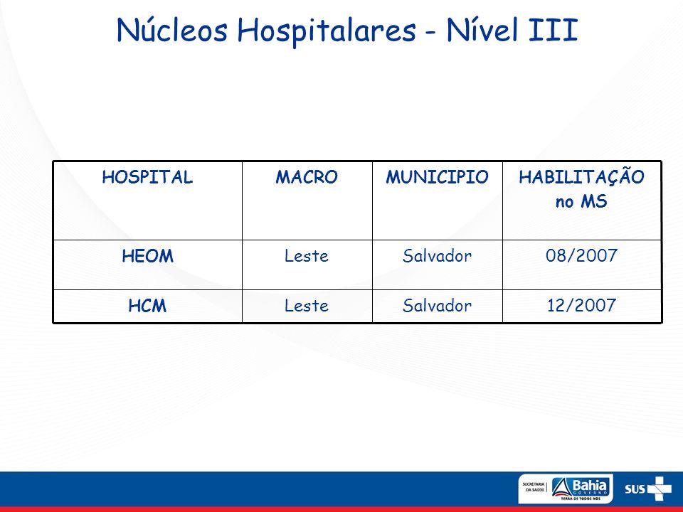 Núcleos Hospitalares - Nível III