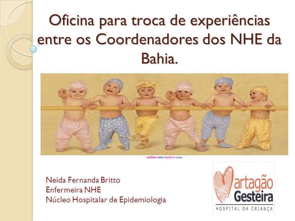 Oficina para troca de experiências entre os Coordenadores dos NHE da Bahia.