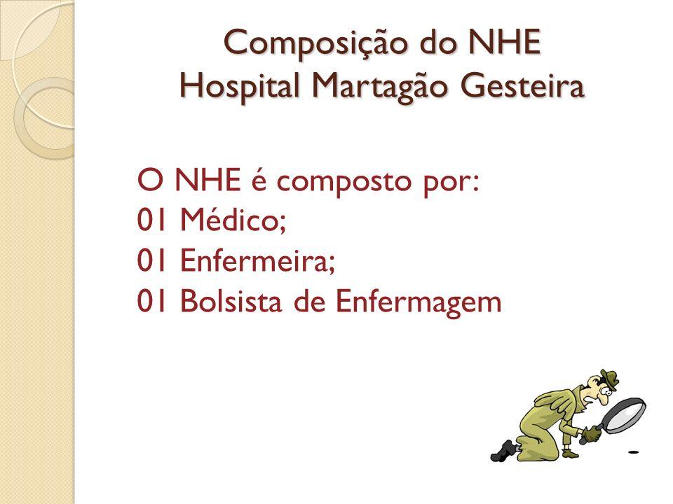 Composição do NHE Hospital Martagão Gesteira