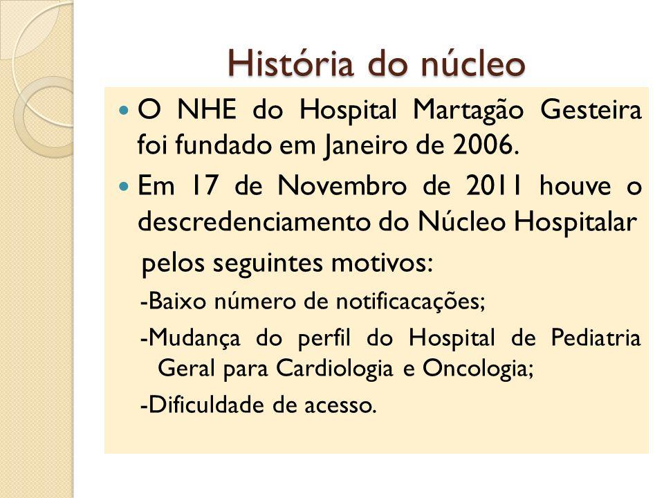 História do núcleo O NHE do Hospital Martagão Gesteira foi fundado em Janeiro de 2006.