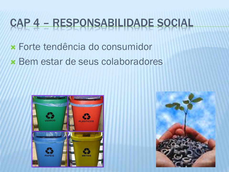 Cap 4 – Responsabilidade Social
