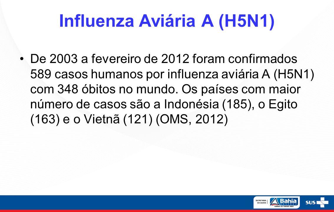 Influenza Aviária A (H5N1)