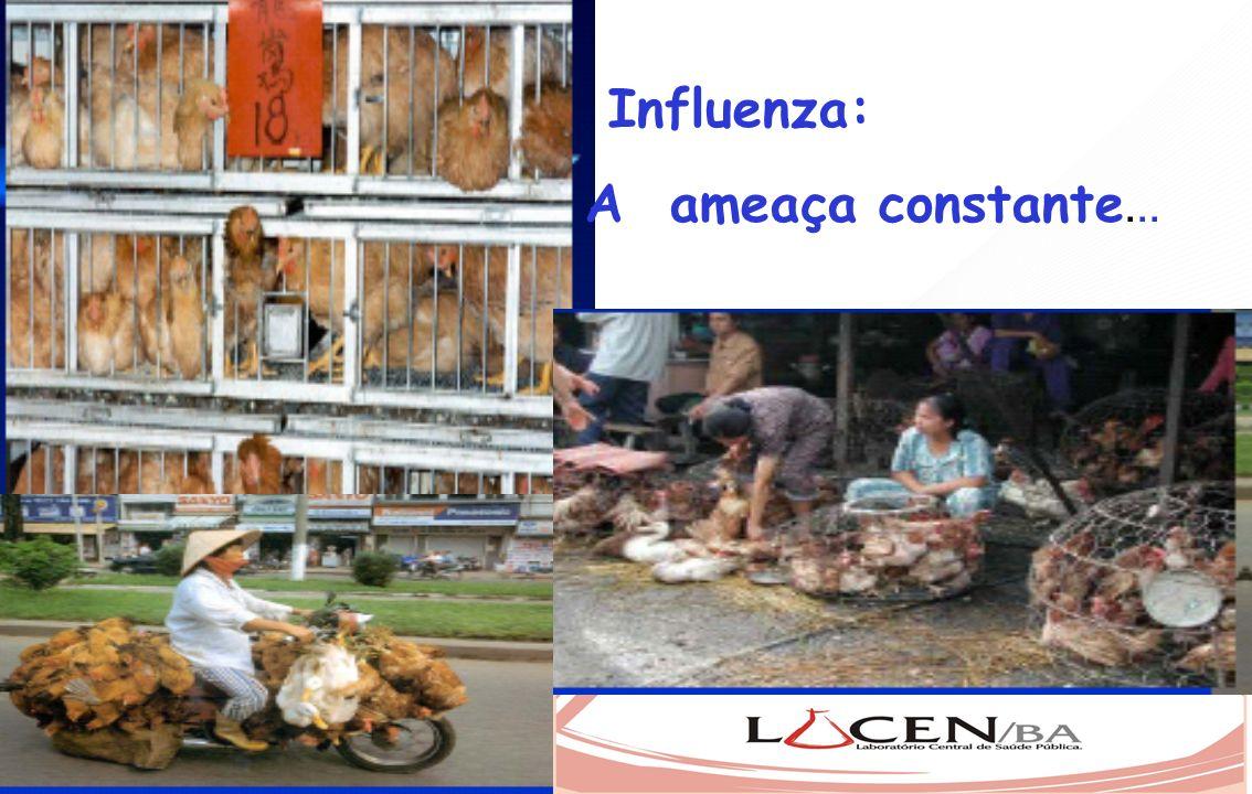 Influenza: A ameaça constante...