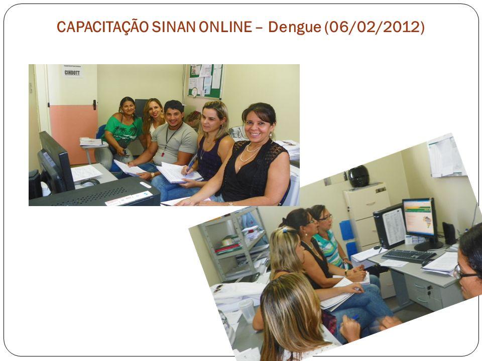CAPACITAÇÃO SINAN ONLINE – Dengue (06/02/2012)