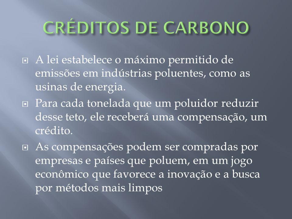 CRÉDITOS DE CARBONO A lei estabelece o máximo permitido de emissões em indústrias poluentes, como as usinas de energia.