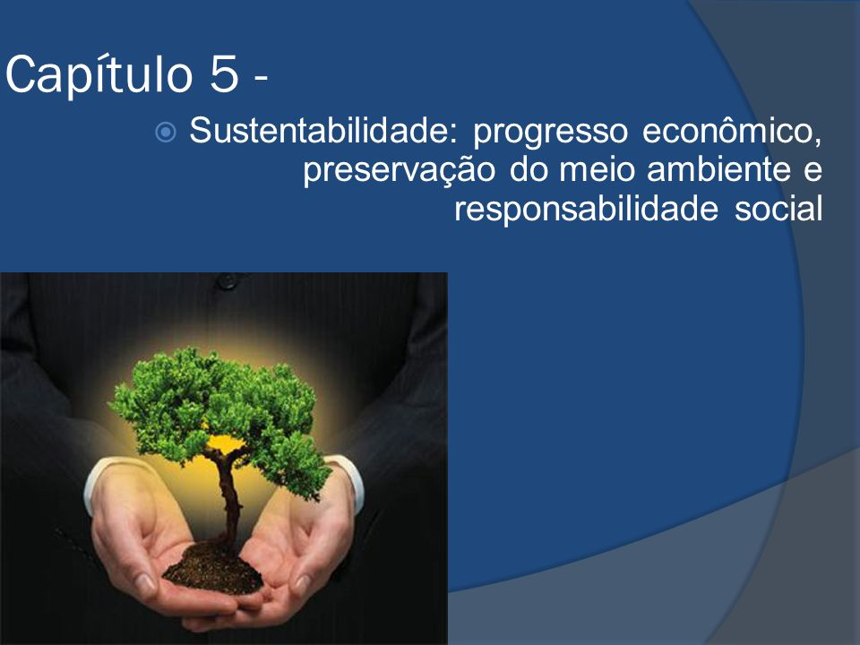 Capítulo 5 - Sustentabilidade: progresso econômico, preservação do meio ambiente e responsabilidade social.