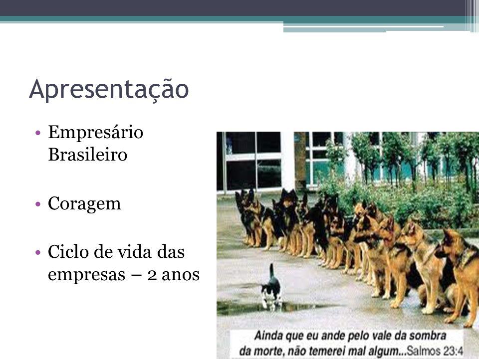 Apresentação Empresário Brasileiro Coragem
