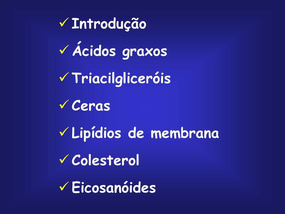 Introdução Ácidos graxos Triacilgliceróis Ceras Lipídios de membrana Colesterol Eicosanóides