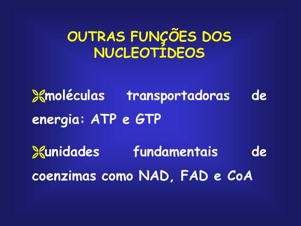 OUTRAS FUNÇÕES DOS NUCLEOTÍDEOS