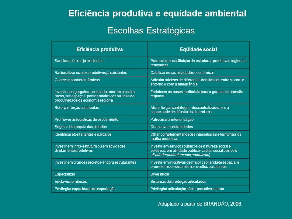 Eficiência produtiva e equidade ambiental