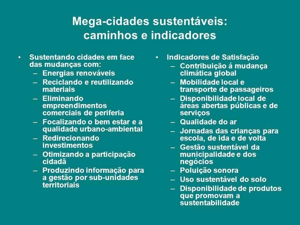 Mega-cidades sustentáveis: caminhos e indicadores