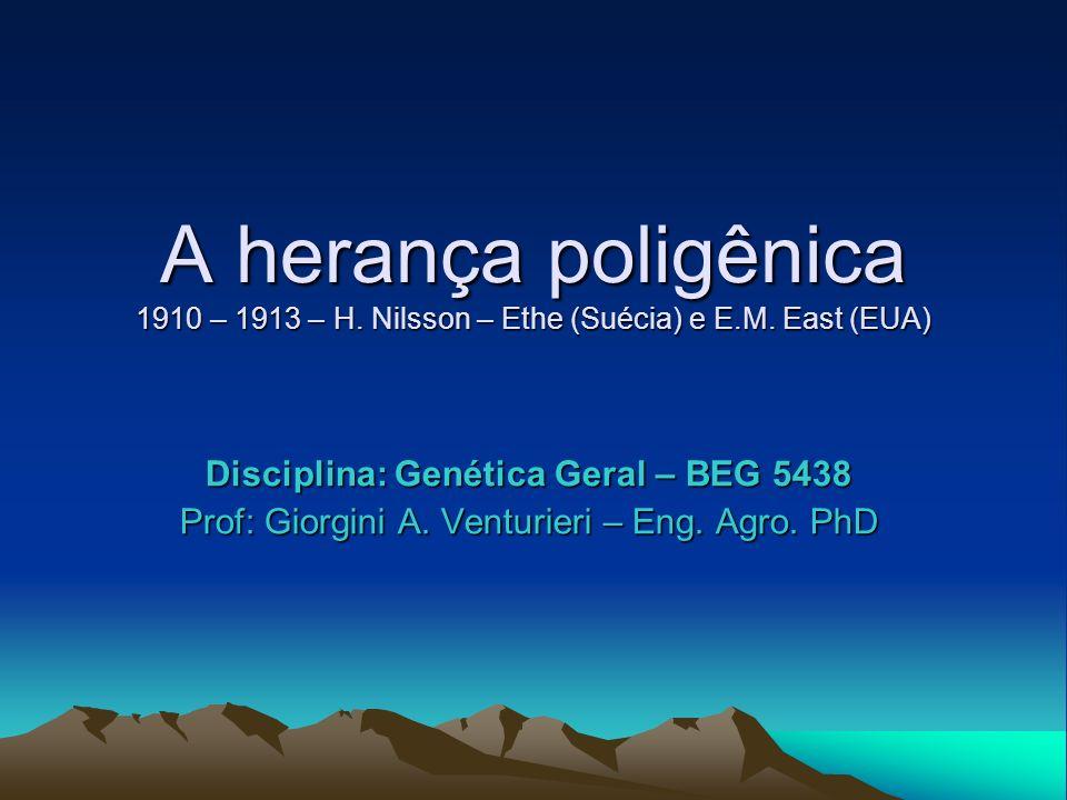 Disciplina: Genética Geral – BEG 5438