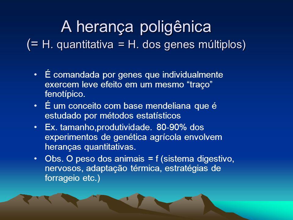 A herança poligênica (= H. quantitativa = H. dos genes múltiplos)