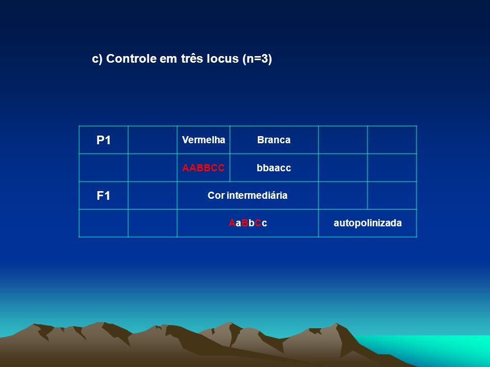 c) Controle em três locus (n=3) P1