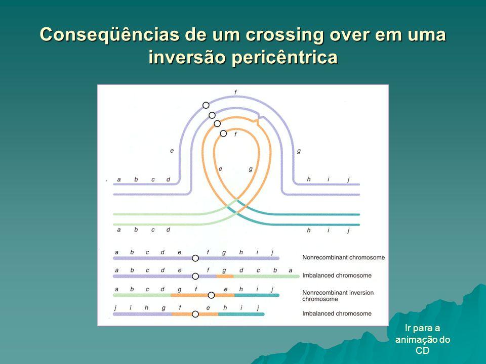 Conseqüências de um crossing over em uma inversão pericêntrica