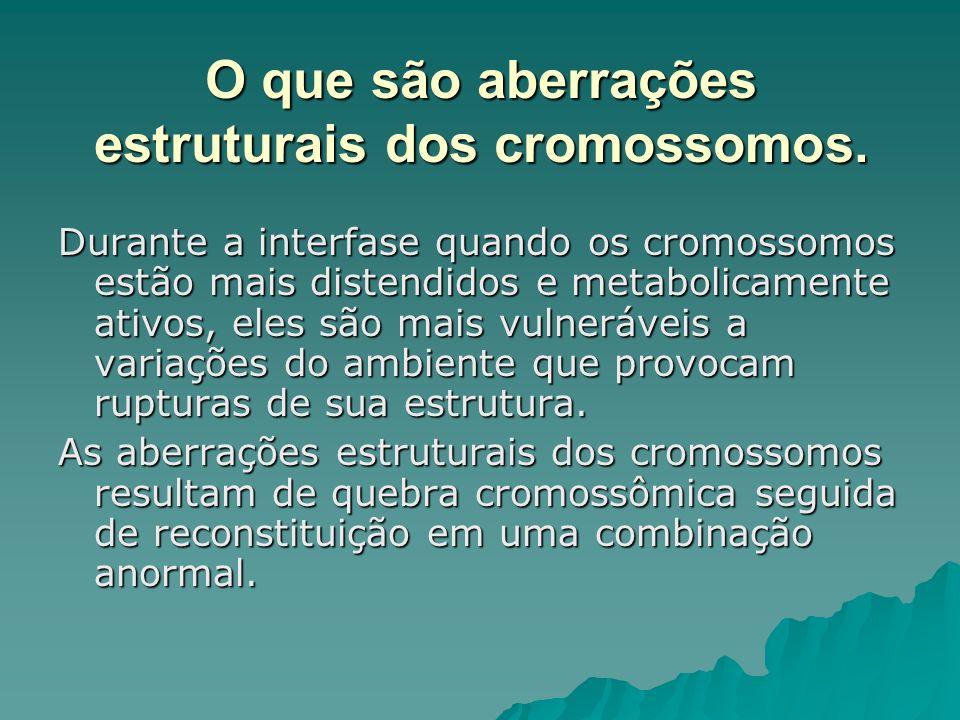 O que são aberrações estruturais dos cromossomos.